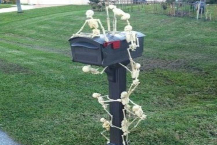skeletons mailbox