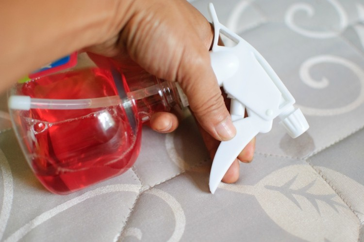 Remove urine stains with a DIY spray of