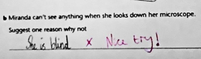 brilliant-kids-test-answers-33