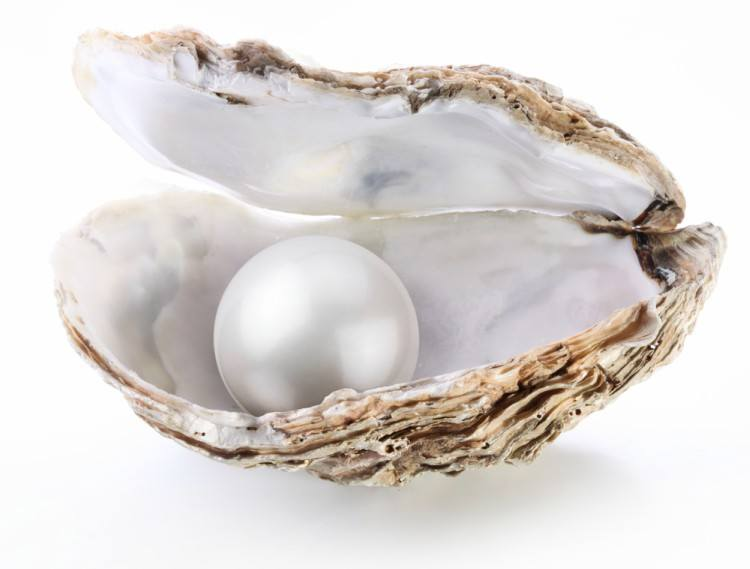 Image of pearl in oyster.