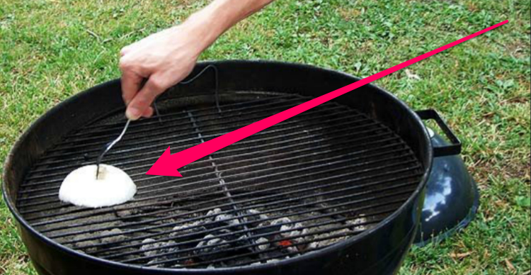 grill onion clean