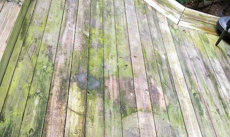Deck before cleaning.