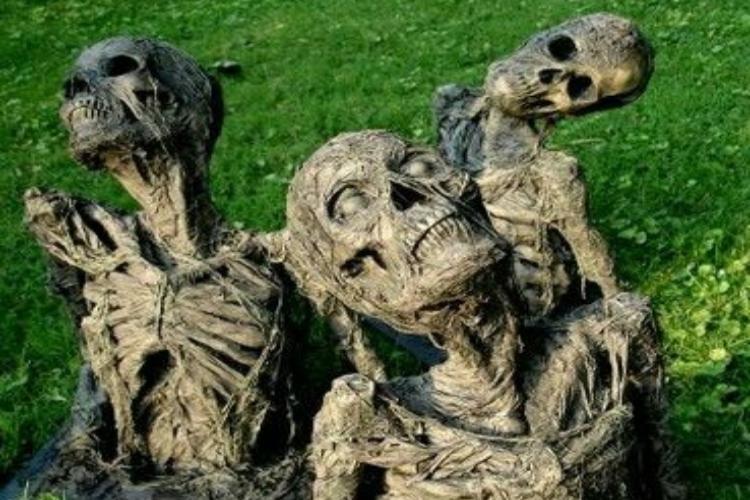 skeletons ground