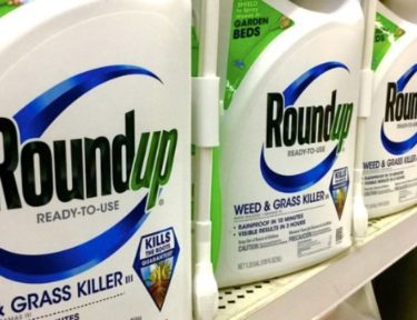 Photo of Roundup on shelves.