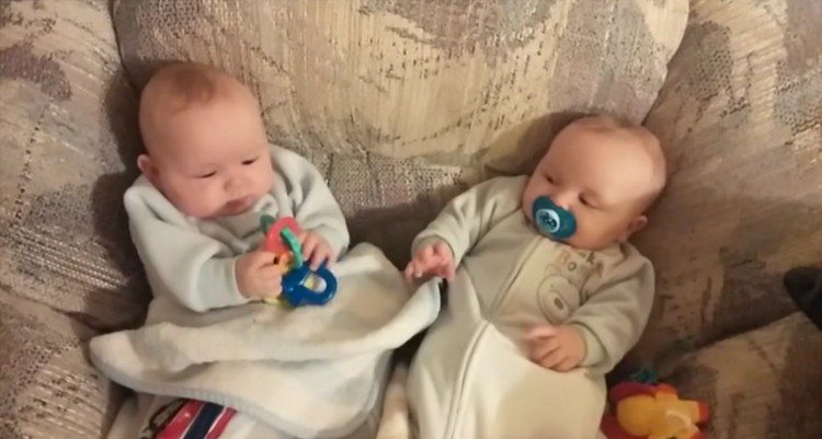 Twin jealously takes his brother's toy.