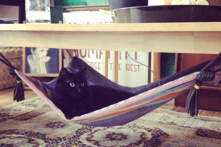 towel hammock