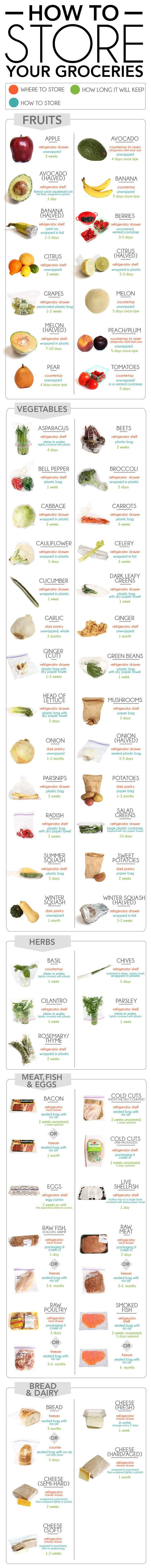 Storing Food Graphic
