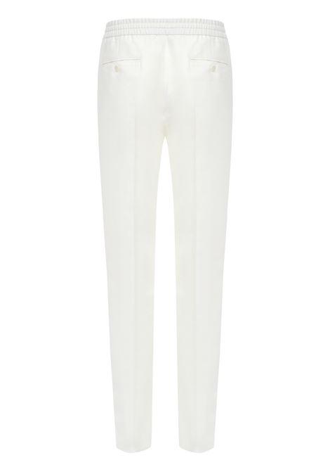 Brioni Trousers Brioni | 1672492985 | RPM20LP61149090