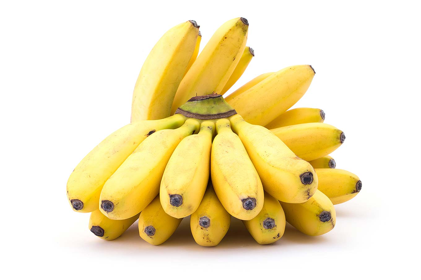 The Banana Split: Can Bananas Really Help You Lose Weight?