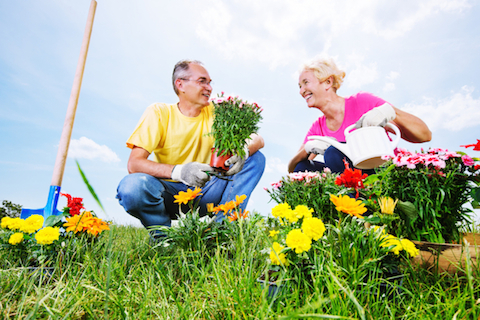 Gardening for Health, Happiness, and Long Life