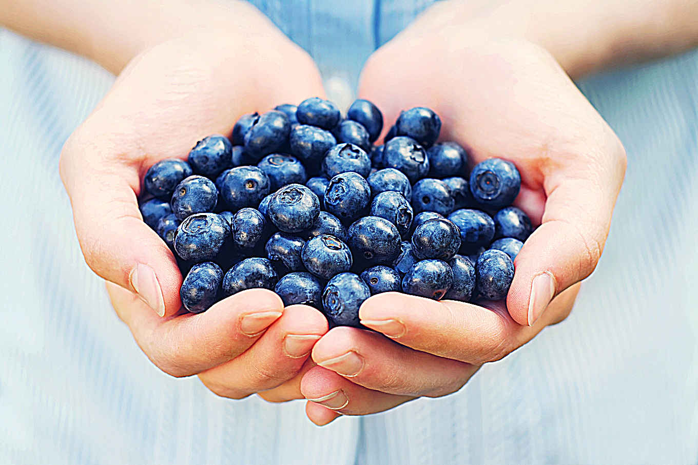 Why Blueberries Are One of the World's Best Superfoods