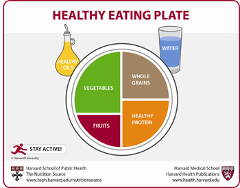 Do We Have a Contender? Harvard's Healthy Eating Plate Challenges USDA's MyPlate