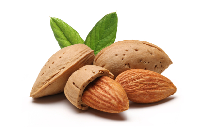 Almonds Have Fewer Calories Than Listed on Food Labels!