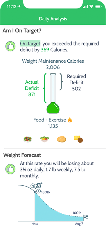 MyNetDiary iPhone app: diet analysis screen
