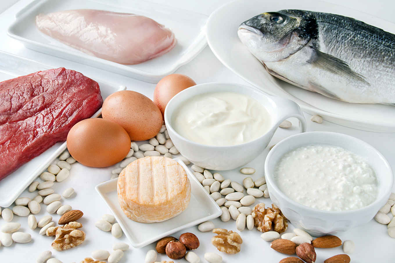 Protein Foods Mynetdiary