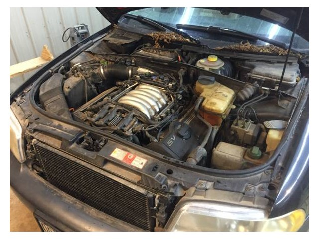 1999 Audi A4 2.8l Engine