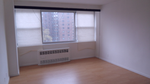 Civic Center 1 bedroom