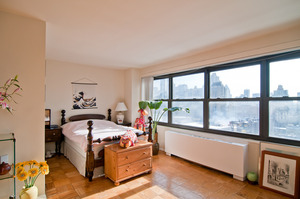142 West End Avenue #29S