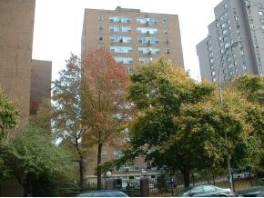 125 Ashland Place #3C