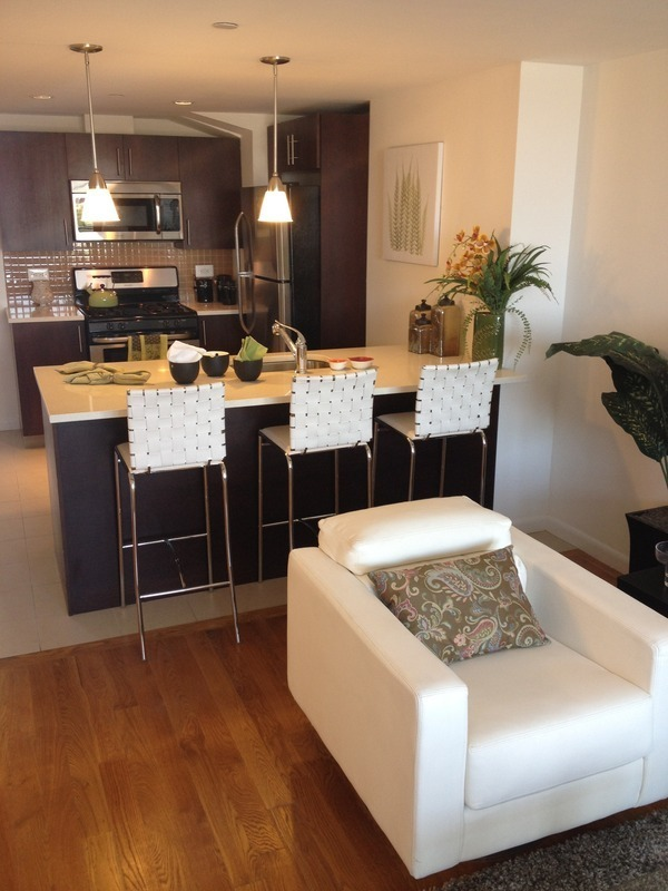 Exo Astoria 2 Bedroom 2 Bath Apartment #13B