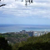 Vi's Top of Tantalus
