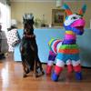 Dog n donkey