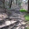 Cedar Ridge 3