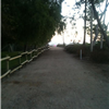 Anaheim Half and Yorba 5k