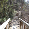 Cedar Ridge 6