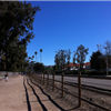 Rohring Trail 2