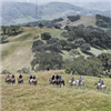 Rancho San Juan Trail Run