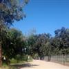 Rohring Trail