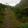 Downhill at Miwok