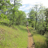 Howe Ditch Trail