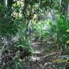 Course Photo