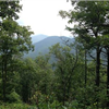 Duncan Ridge at Mulky Gap (Candy Finley)