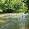 Etowah River