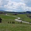 Montana 100