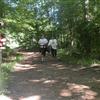 Bernheim Challenge 7 Miler