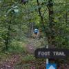 Taconic Crest Trail