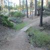 Trail near Ridge Rd