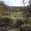 Mendon Trail Run