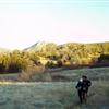 Runners on Harvey Moore Trail