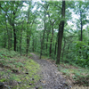 Snake trail. http://sirbikesalot.com/entry.php?fid=276