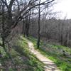 Cedar Ridge 2
