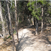 Cedar Ridge 5