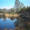 Avery Pond