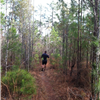 Running on a section of the trail