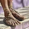 tarahumara runner