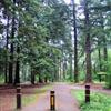 Cornwall Park3